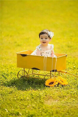 New Cute Trailer for Newborn Baby Creative Photography Prop D-76