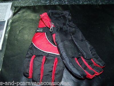 Thermal Lined Ski Gloves (One Size)