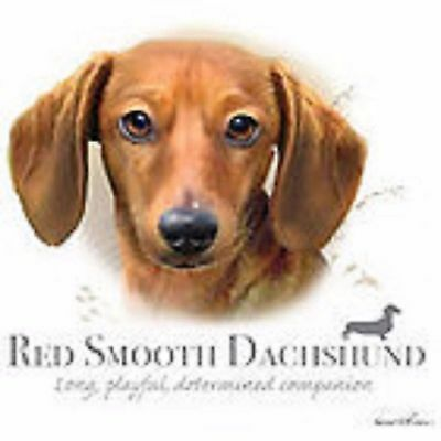 Red Smooth Dachshund Robinson Tote