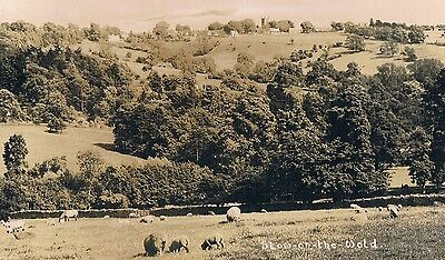 Stow-On-The-Wold - Lovely Rural Scene - Real Photo Posted 1947
