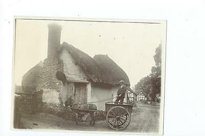 Herefordshire PLAIN BACK RP PHOTOGRAPH of a donkey cart in Fownhope 1902