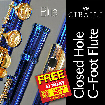 Quality CIBAILI Flute • BLUE with SILVER keys • BRAND NEW PERFECT •SAVE $30.00 •