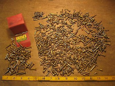 lot antique brass wood screws vintage mixed slotted woodworking shop hardware