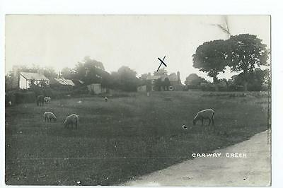 Herefordshire RP of houses at Garway Common @1910