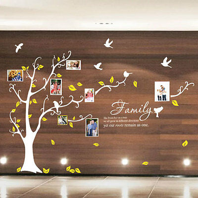 Family Tree Bird Photo Frame Nursery Art Wall Stickers Quotes Wall Decals 33