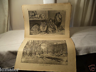 Le Cyclorama Universel 1890's Montreal Journal Illustrations 20 loose Napoleon