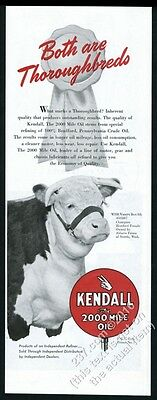 1951 champion hereford cattle cow Vanity Box photo Kendall oil vintage print ad