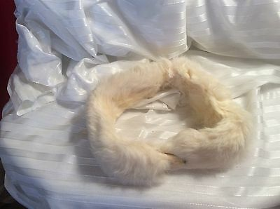 Cute Vintage 50's  Fox Face Ivory Color Rabbit Fur Collar Clip Very Nice