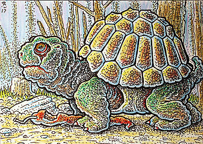 ACEO Original Fantasy Molly Turtle Dining on a Red Pepper