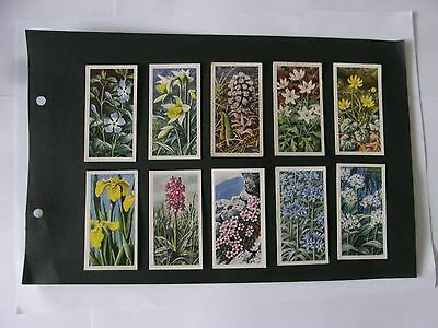 Full Set x 50 Tea Cards Brooke Bond. Wild Flowers Series II.   1959.