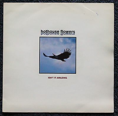 """HOTHOUSE FLOWERS ISN'T IT AMAZING Rock, Pop, Folk, Country 1990s 7 """" INCH 45RPM"""