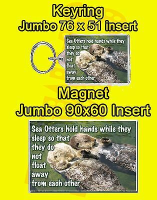 Sea Otter Quote Jumbo Fridge Magnet Or Jumbo Keyring Birthday Animal Mammal New