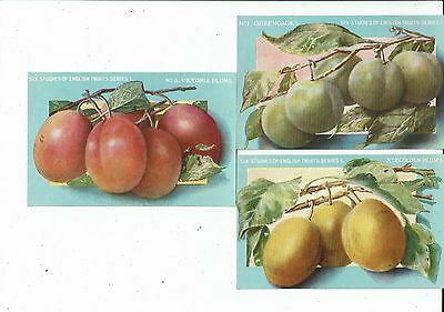 Post Cards Advertising Chivers & Sons English Fruits Series 1
