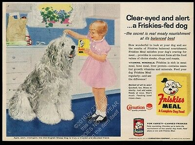 1957 Old English Sheepdog and little girl art Friskies dog food vintage print ad