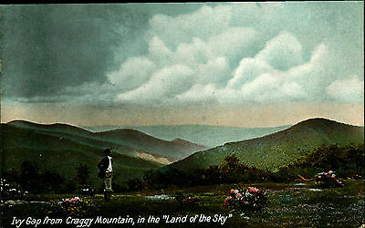 CRAGGY MOUNTAIN, NORTH CAROLINA, NC, Land of the Sky, Ivy Gap, Vintage Postcard