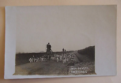 RP Postcard c.1910 EAST SUSSEX FOXHOUNDS SUSSEX