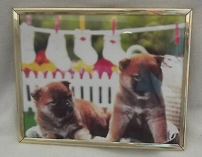 CHOW CHOW ? Beautiful puppy dog framed picture