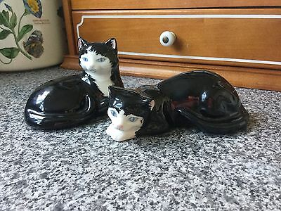 Just Cats & Co Pair Of Small Black And White Cats