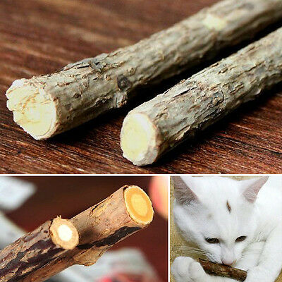1 sac Naturel Chat Catnip Stick Matatabi Polygama Chew Treat Molaire Jouet