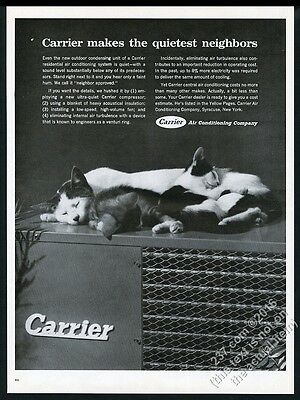 1962 cat kitten sleeping on air conditioner photo Carrier AC vintage print ad