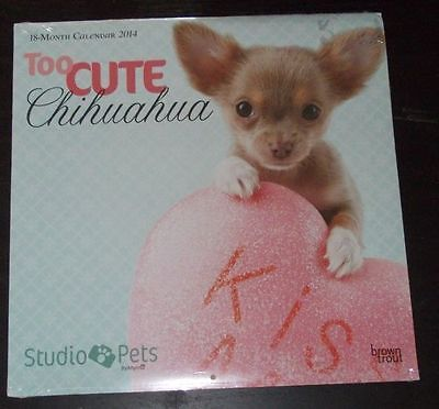 never used! Too Cute CHIHUAHUA 18-Month CALENDAR 2014 Photos Studio Pets DOGS