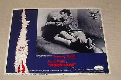 1968 Poor Cow Lobby Card 1 Sexploitation Terence Stamp Carol White Bizarre