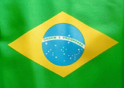 8' x 5' BRAZIL FLAG Brazilian South America Extra Large Funeral Coffin Drape
