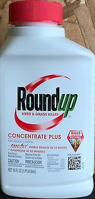 Roundup Weed & Grass Killer Concentrate Plus - 16-ounce bottle