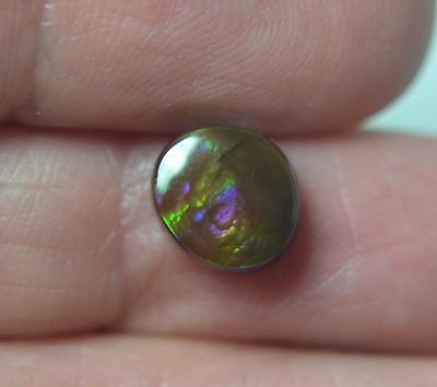 LINDA'S  MEXICAN FIRE AGATE  GREEN BLUE VIOLET 9 mm x 8 mm CABOCHON   FLAT BACK