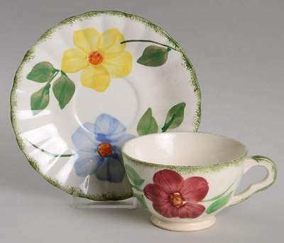 Blue Ridge Southern Pottery FLOWER RING Cup & Saucer 2285270