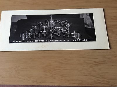 VINTAGE RACING PIGEON PHOTOGRAPHY LOVELY Collection of TROPHIES