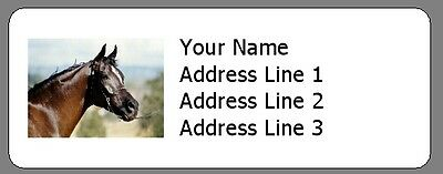 Beautiful Brown Horse - 30 Personalized Return Address Labels