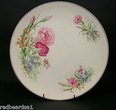 China Replacement Royal Doulton Carnation Dinner Plate 1950s D6419 33548 26cms
