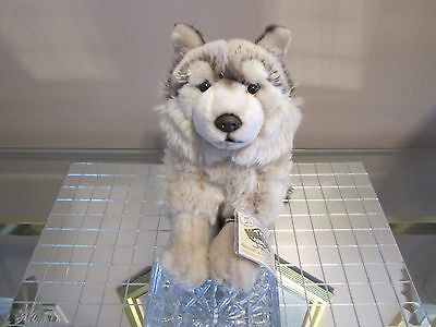 Webkinz Signature Timber Wolf With Tags! Spectacular! + Free Canada Gift!! Read!