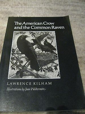 The American Crow and the Common Raven v. L. Kilham