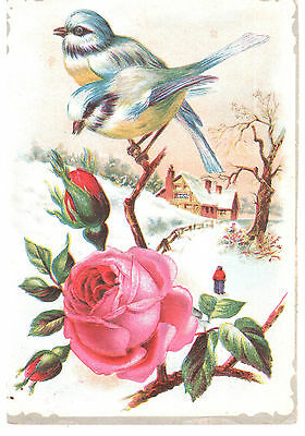 Birds And Flowers Lion Coffee Woolson Spice Co Toledo Victorian Trade Card Embos