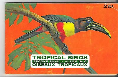 Brooke Bond Canada - Tropical Birds - complete with set of 48 cards