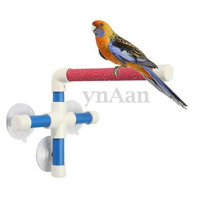 3 Suction Cup Pet Birds Perches Parrot Budgie Wall  Paw Grinding Shower Stand