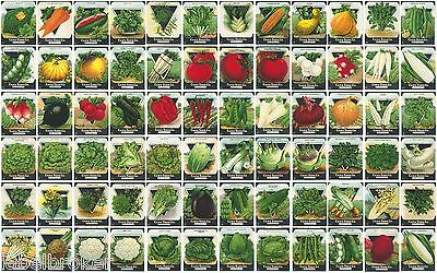 72 Vintage Seed Packet Big Lot Nos C1920 Garden Lithograph General Store Pack