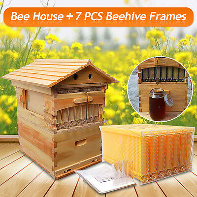 7pcs/4pcs Auto Flow Honey Hive Beehive Frames +Beekeeping Natural Wooden House