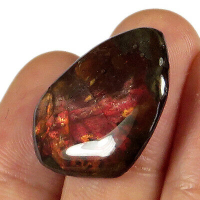 11CT Natural Canadian Ammonite Ammolite Fossil Cab Ready For Setting MSJA414