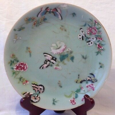 C19Th Chinese Canton Plate With Exotic Birds And Butterflies