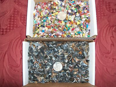 100 grey fossil shark teeth and 100  gemstones per lot
