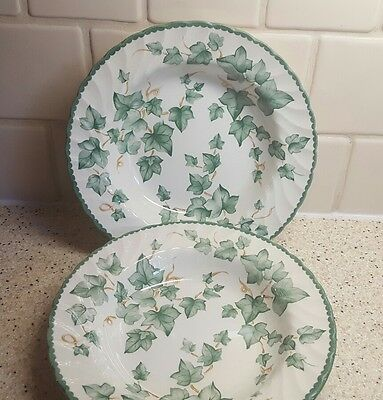 Two BHS Country Vine rimmed bowls 9 inch dessert / soup/ pasta