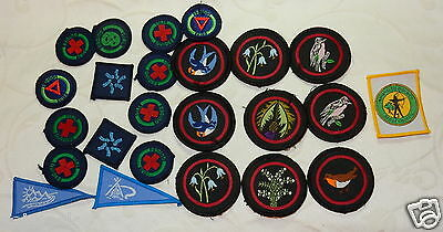 Fine Girl Guides Patrol Proficiency & Patrol Badge Patch - Lot Collection  Mint