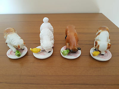 Set Of 4 China Dogs Feeding With Birds -  Rough Collie Poodle Boxer Spaniel
