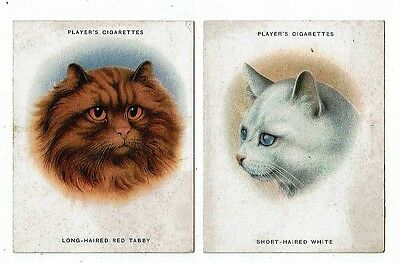 Post Cards Cigarette Cards From A Series Of 24 1936 John Players
