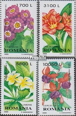 Romania 5478-5481 (complete.issue.) unmounted mint / never hinged 2000 ornamenta