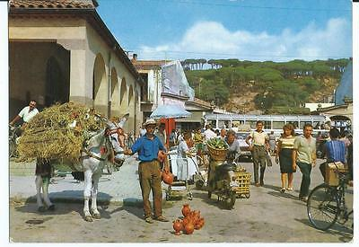 Colour Postcard of A View of The Market, Calella, Spain