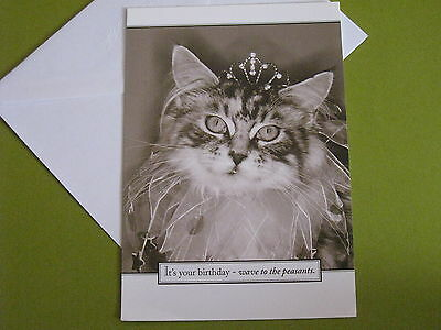 Sunrise Greetings cat birthday card(free ship $20 min)